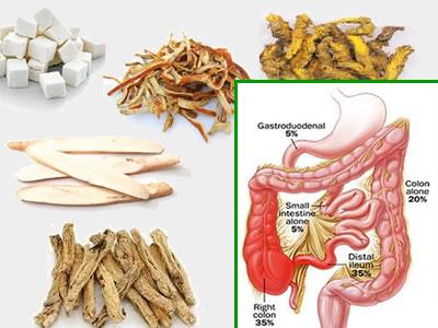 herbal-remedies-for-crohns-disease