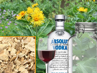 how-to-make-elecampane-tincture