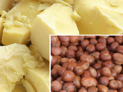 shea-butter-for-dry-hair