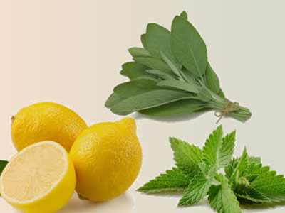 Sore Throat Remedies: Sage, Peppermint and Lemon – Natural