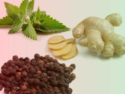 Home Remedies: How to Treat Vomiting and Nausea – Ginger, Black Pepper and  Peppermint – Natural Remedies Center